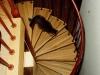 spiral-staircase-corvallis